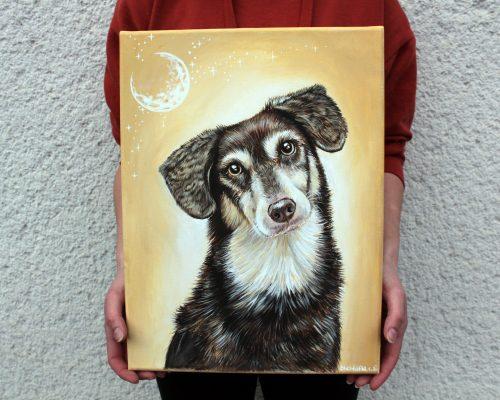 Ročno poslikano platno hišnega ljubljenčka psa, portret domačih ljubljenčkev, portret muce kužka